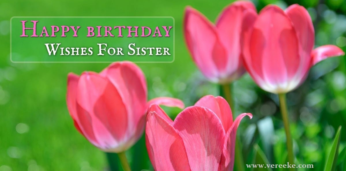 Happy Birthday Sister Messages Quotes With Images